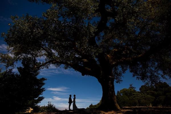 Mountain House Estate – Wine Country Wedding – California wine country weddings – Bay Area weddings bride and groom at sunset