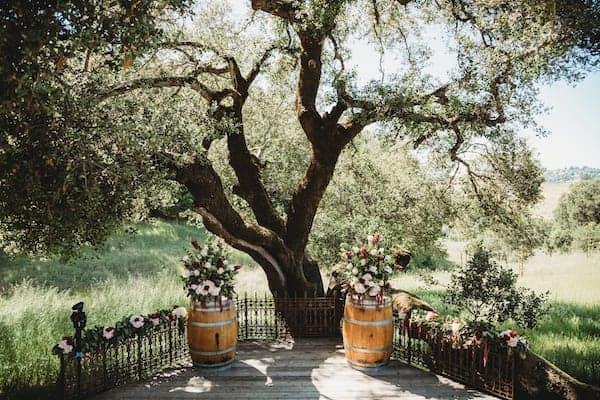Mountain House Estate – California wine country weddings – Mendocino country wedding venue – Oak Tree Terrace ceremony with wine barrels