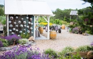 California wine country wedding venue - outdoor reception space - shed and garden