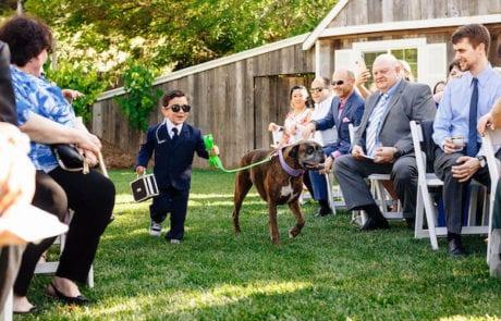 Ring bearer - Ring bearer with security uniform - cute ring bearer - ring bearer walking dog