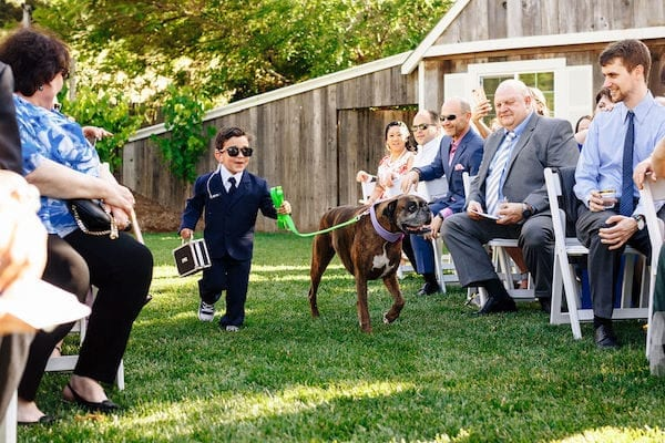 Ring bearer - Ring bearer with security uniform - cute ring bearer - ring bearer walking dog