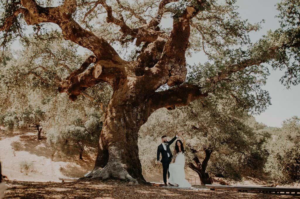11 oak tree terrace rustic mountain house estate weddingi venues northern california